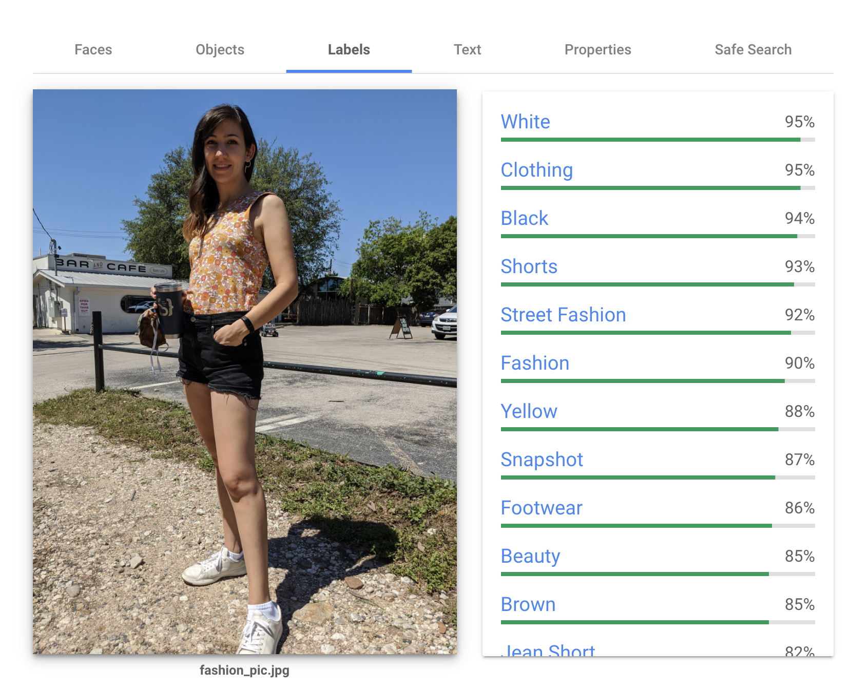 Screenshot of the Vision API analyzing an outfit